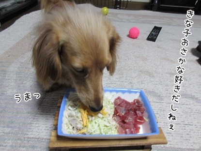 kinako4149.jpg
