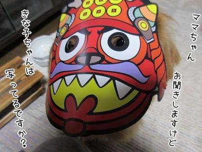 kinako4175.jpg