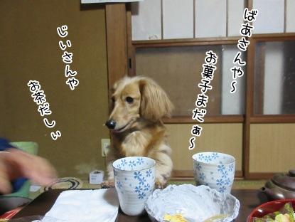 kinako4197.jpg