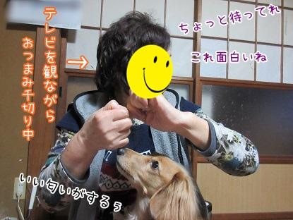 kinako4198.jpg