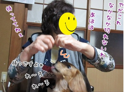 kinako4200.jpg