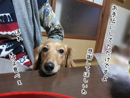 kinako4202.jpg