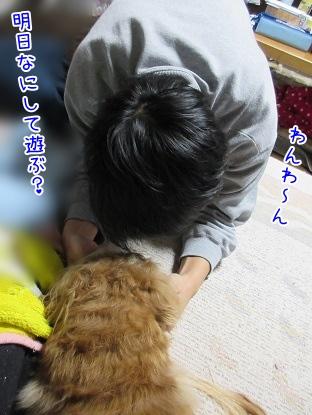 kinako4203.jpg