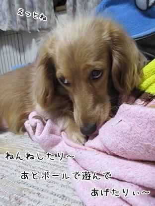kinako4205.jpg