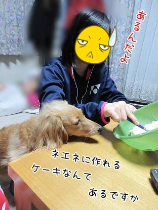 kinako4225.jpg