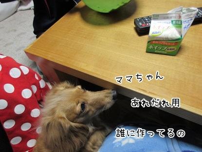 kinako4226.jpg