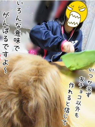 kinako4227.jpg