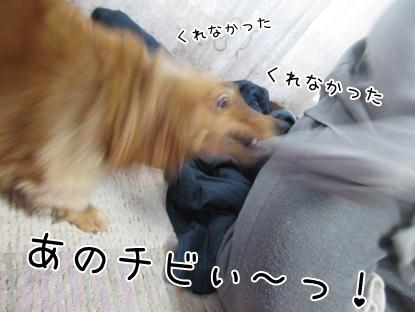 kinako4232.jpg