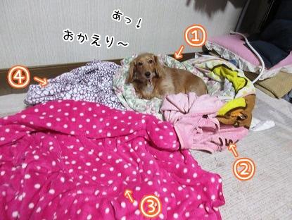 kinako4257.jpg