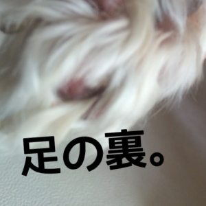 160104_11.jpg
