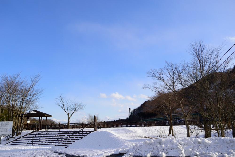 _もみじ谷大吊り橋DSC_0160