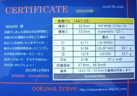 P1020314 (450x314)