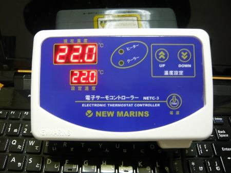 P1020929 (450x338)