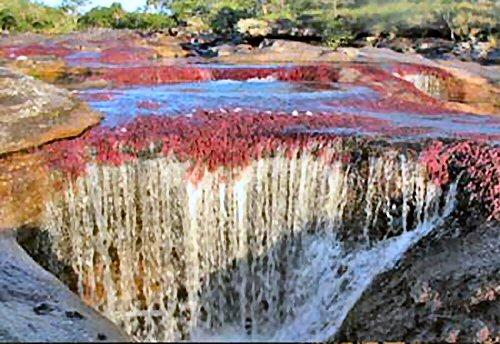 500 colorful river01