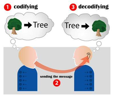 01b 019b codify decodify