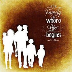 01d 250 family