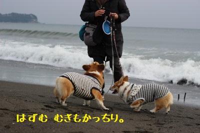 海は楽しいねっ♬