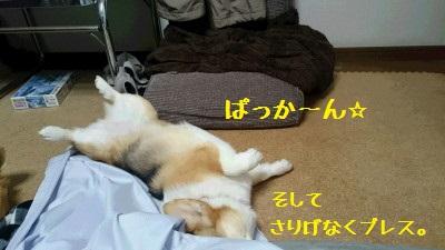 ぱっか~ん