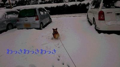 今年も雪遊び行こうね