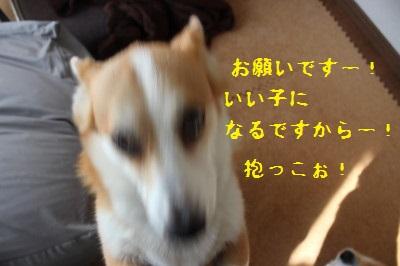 佐川さんが行っちゃう!!