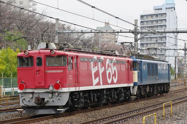151126kawaguchi-hai9637-1.jpg