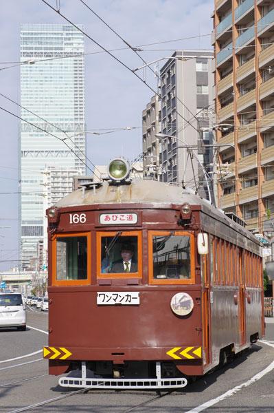 160103matsumushi1.jpg