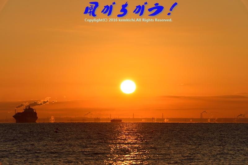 城南島海浜公園 日の出 099