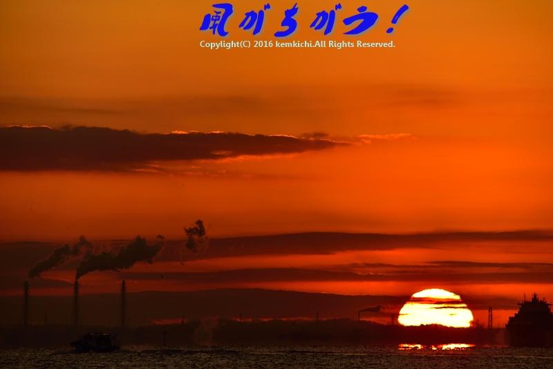 城南島海浜公園 日の出 048