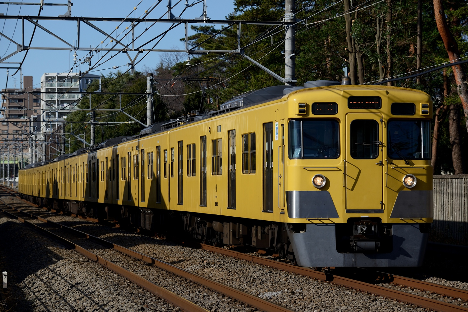 DSC_5253.jpg