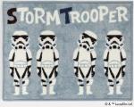 STORM TROOPER_45X60
