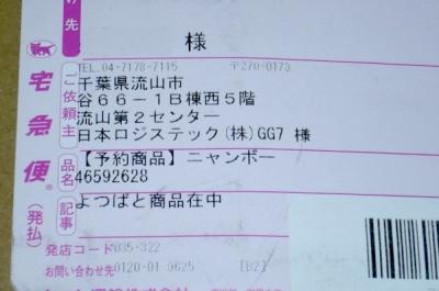 P1050935z.jpg