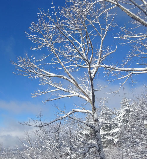 懐かしい冬景色5