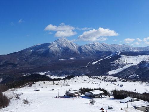 やっとスキーに行きました2