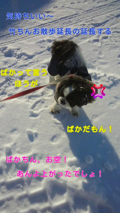 moblog_11256178.jpg