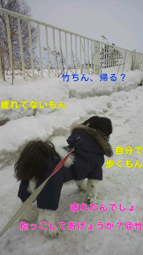 moblog_56a12ffd.jpg