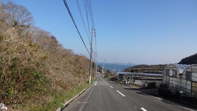 海へ下る坂道