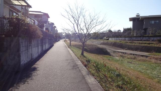 香流川沿い