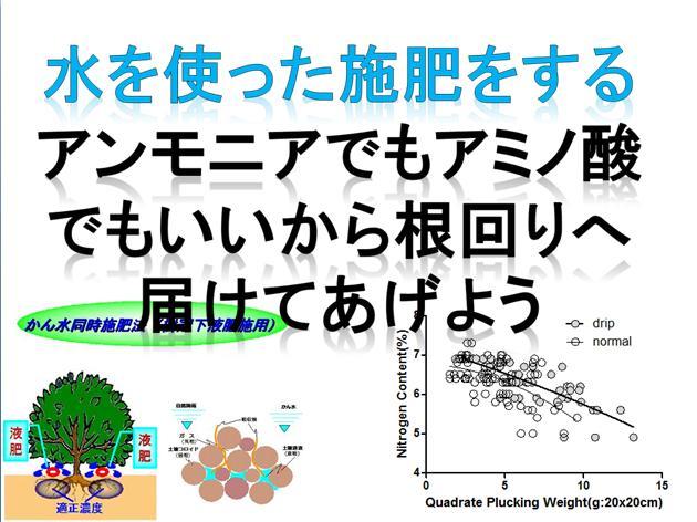 ff4_20151217194815624.jpg