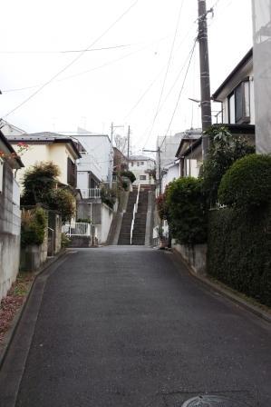 S藤沢市亀井野DSCF2060