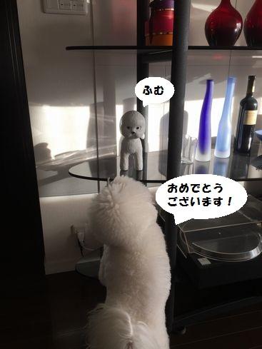 nanaH720.jpg