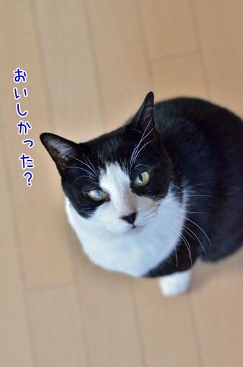 DSC_5761_2.jpg