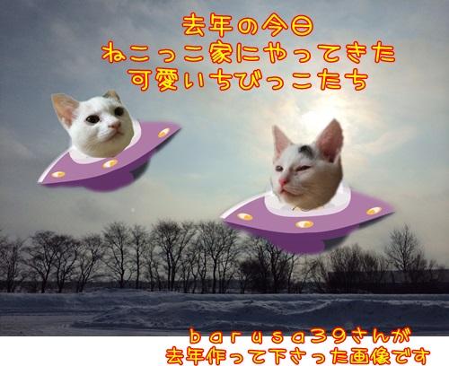 image2_2015122523433513f.jpg