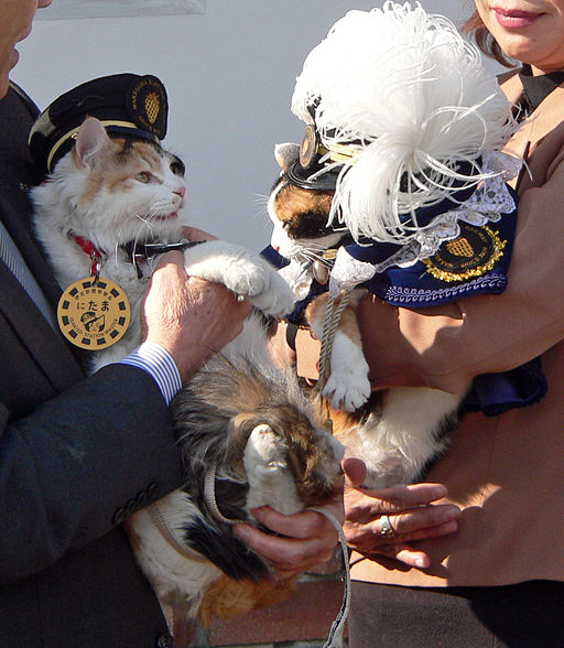 Stationmaster_NITAMA_and_TAMA_20110105.jpg