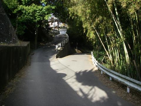 _r16suma19.jpg