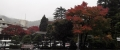 箱根小涌園からの紅葉2015