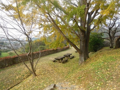 松陰神社(18)