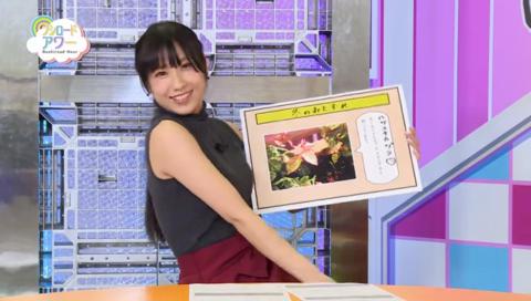月刊ブシロードTV(1/14放送)