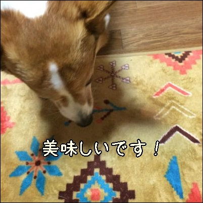 kuujiro224.jpg