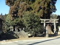 次第窪の諏訪神社の道祖神