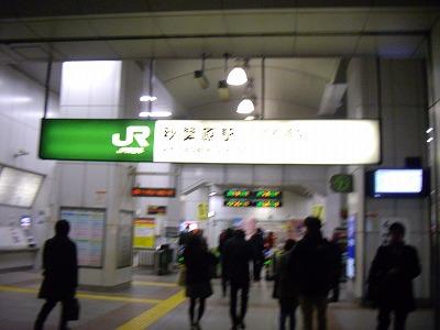 IMGP5561.jpg
